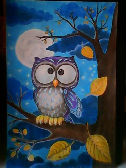 * Owl *   pensil warna