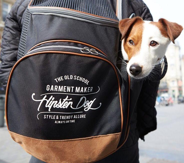 Hipster Dog ryggsekk