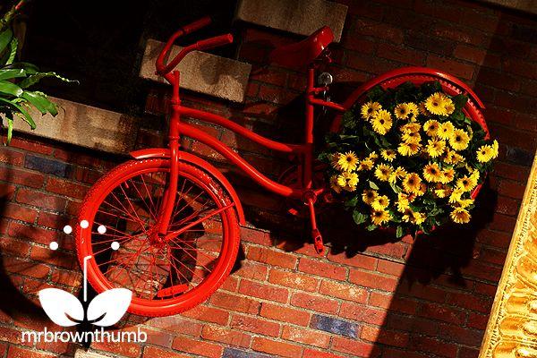 bike planter hung near stairs becomes a vertical garden
