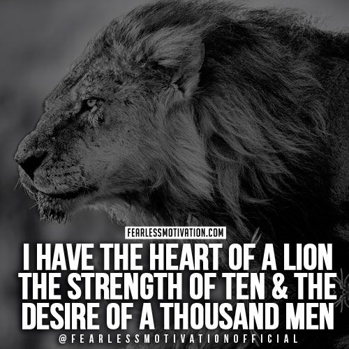 Pin By Shawn Thompson On Fitness Quotes: 30 Of The Best Lion Quotes In Pictures