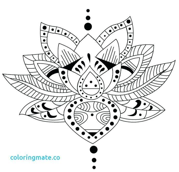 Lotus Flower Mandala Coloring Pages Coloring Sheet Color Pages