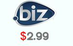 .BIZ domain name $2.99,Register Now