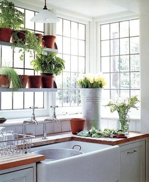 Herbs in your kitchen window