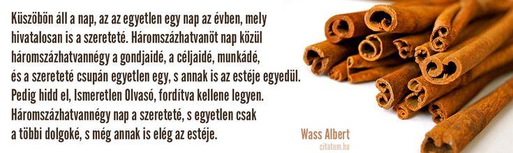 Wass Albert idézet #karácsony #idézetek #idézet