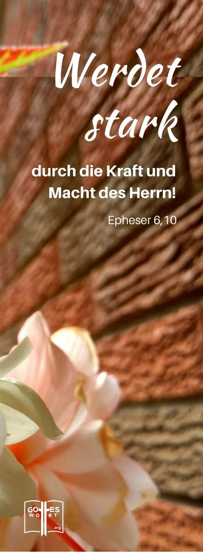 Und schließlich: Werdet stark durch die Kraft und Macht des Herrn! ... Epheser 6,10 Lese und schau weiter: http://www.gottes-wort.com/geistliche-waffenruestung.html