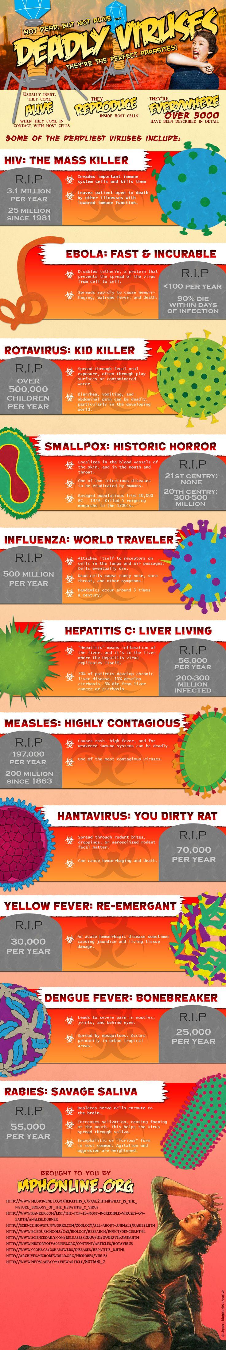 """Los virus más mortales. Infografía tipo cómic pero """"seria"""" Deadly Viruses, the perfect parasites"""