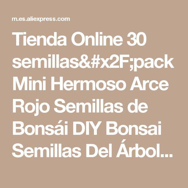Tienda Online 30 semillas/pack Mini Hermoso Arce Rojo Semillas de Bonsái DIY Bonsai Semillas Del Árbol de Arce | Aliexpress móvil