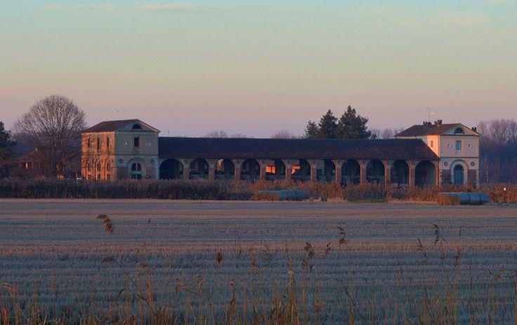 Colore rosa. Pic: Giovanni Vitale. #Lomellina #Pavia #Milano #turismo