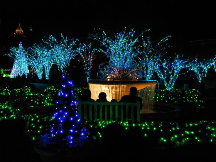 22 best gardening oddities images on pinterest botanical - Callaway gardens festival of lights ...