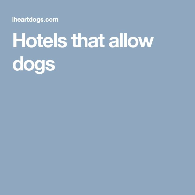 Hotels that allow dogs
