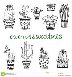 Znalezione obrazy dla zapytania succulents doodle