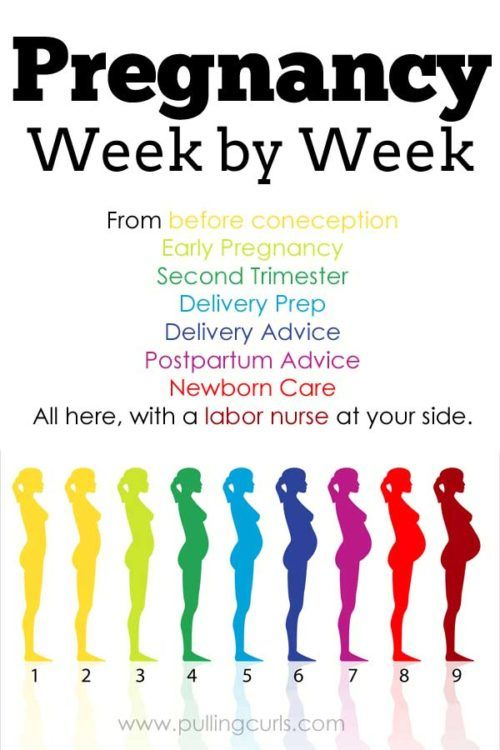 Have a question or want to learn more about a certain phase of pregnancy. This super informative site has your back! Check it out!