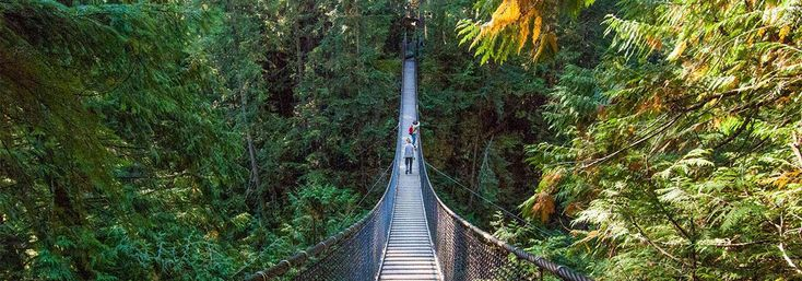 617 Acres of Forest Lynn Canyon Park officially opened to the public in 1912 and has been a popular destination among tourists and local residents ever since. Lynn Canyon Park is a great location for a family picnic, a leisurely hike, or a refreshing swim in one of the many popular swimming holes. Lynn Canyon …