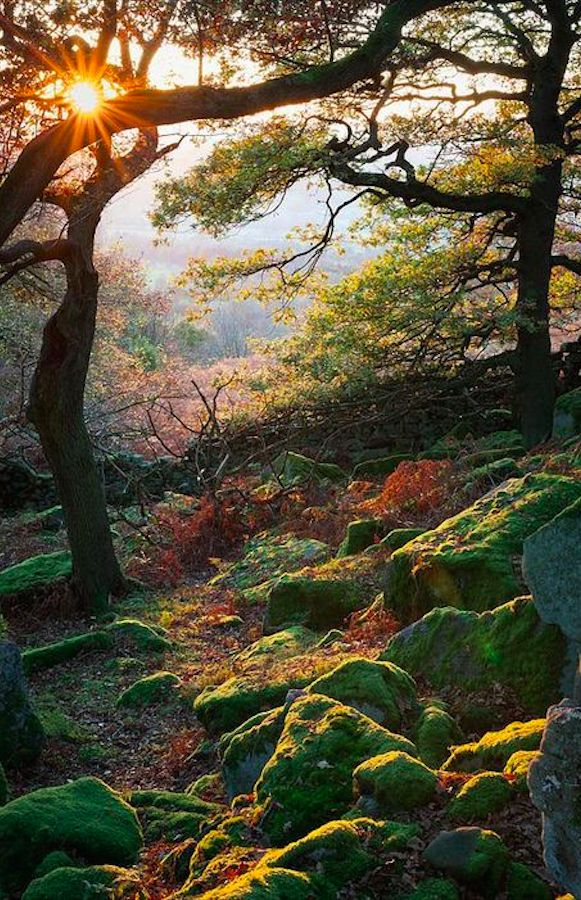 Gardom's Edge near Baslow in Derbyshire, England • photo: James Mills on Flickr