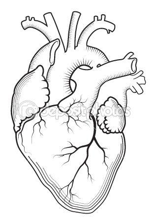Heart (Outline version) Mais