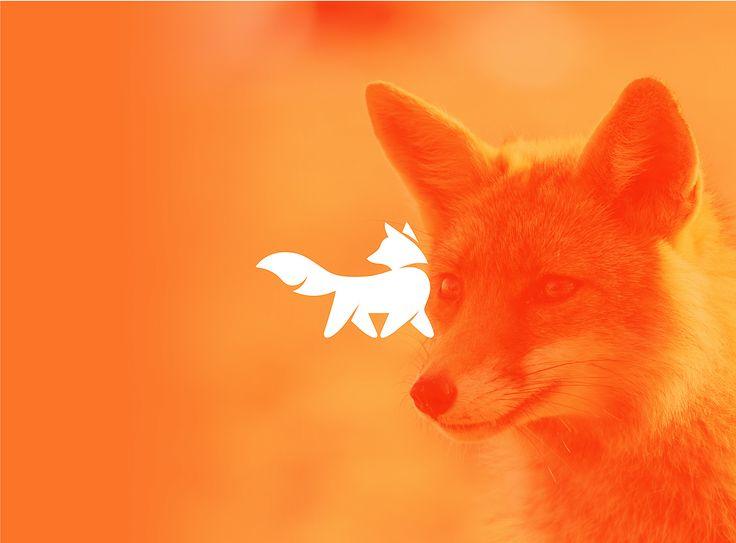 Logo animal on Behance