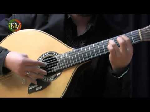 Fado instrumental - Sandro Costa&Luis Guimarães (Variações em re)