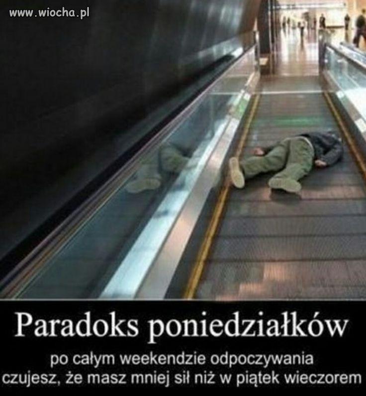 Paradoks poniedziałków....