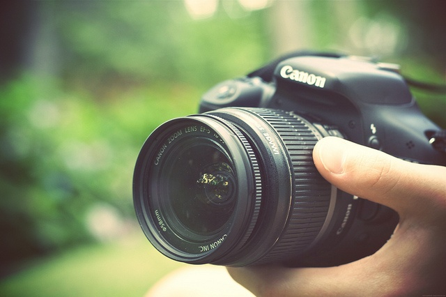 Own a nice camera - Canon T2i