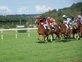 UK Horse Racing News