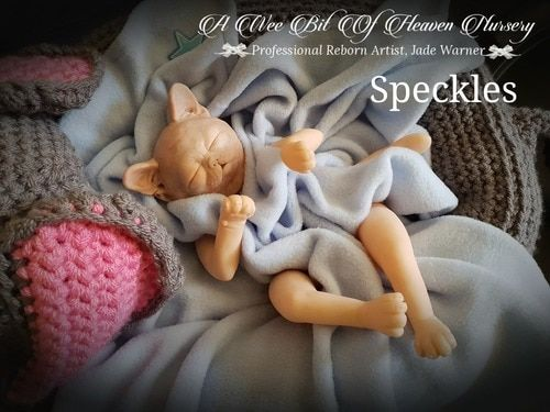 Image result for speckles kitten jade warner