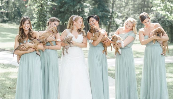 This bridal party posed with adoptable rescue puppies instead of flowers and it's the cutest thing you'll ever see.