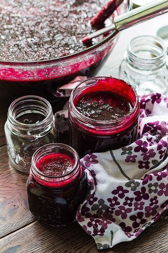 Blackcurrent Syrup (Ribena) by CanuckCuisine