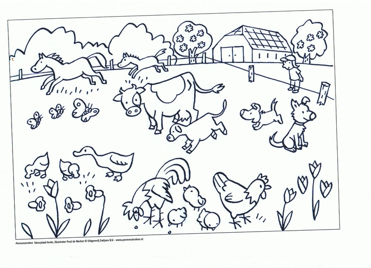 Kleurplaten Dieren Op De Boerderij.Kleurplaat Jonge