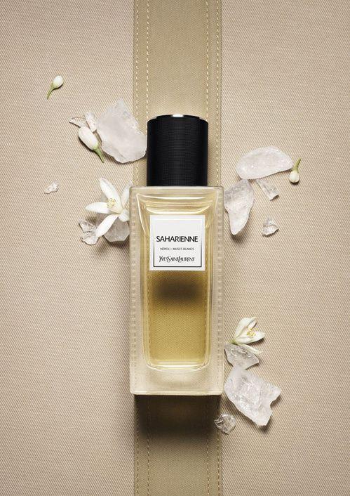 Vestiaire des parfums Yves Saint Laurent   Journal du Luxe.fr Actualité du luxe
