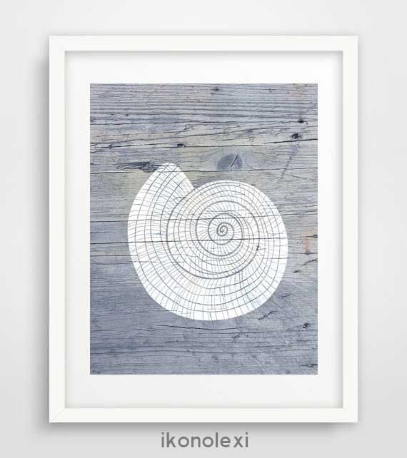 Rustic wall art, seashell prints, beach wall art, seashell posters, coastal wall art, cool artwork, nautical bedroom decor, beach house by Ikonolexi on Etsy