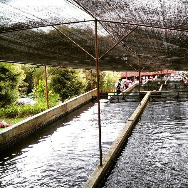 Jardin - Antioquia