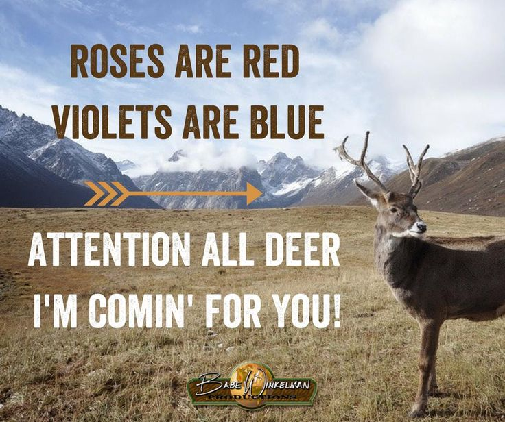 Roses are red, violets are blue. Attention all deer, I'm comin for you!  #hunting #quotes #outdoors #deer