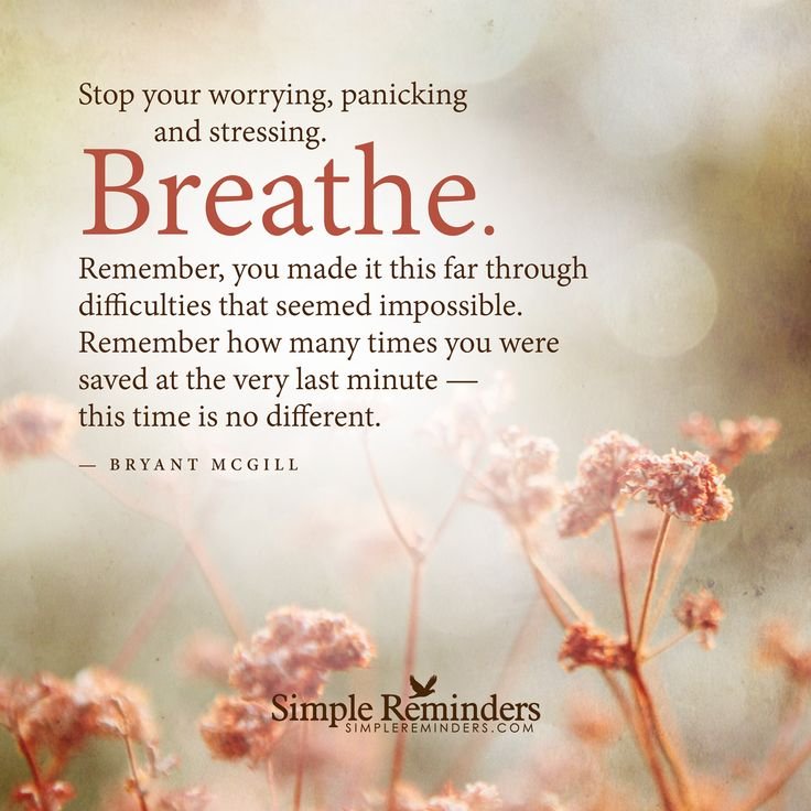 Stop your worrying, panicking and stressing. Breathe. Remember, you made it this far through difficulties that seemed impossible. Remember how many times you were saved at the very last minute — this time is no different. — Bryant McGill
