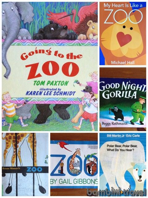 10 Books: Zoo | Bambini Travel