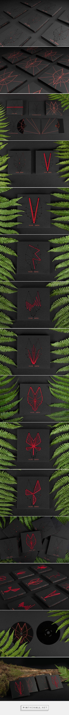 Limited Edition Wolf Gates Music Album design by Ernesta Vala - http://www.packagingoftheworld.com/2016/10/limited-edition-wolf-gates-music-album.html