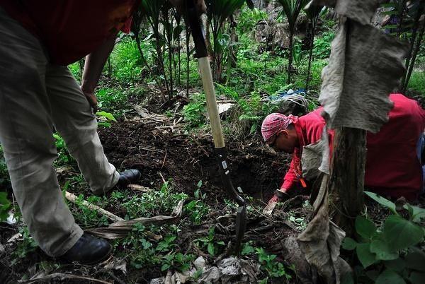 La PGR tiene un registro oficial de fosas clandestinas halladas en los últimos años. Sin embargo, sus reportes no incluyen otros casos graves en el país.
