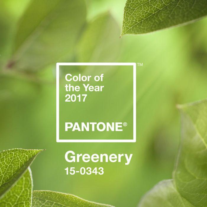 Après le Rose Quartz et Serenity, découvrez la nouvelle couleur Pantone de l'année 2017. Greenery, Pantone colour of the year