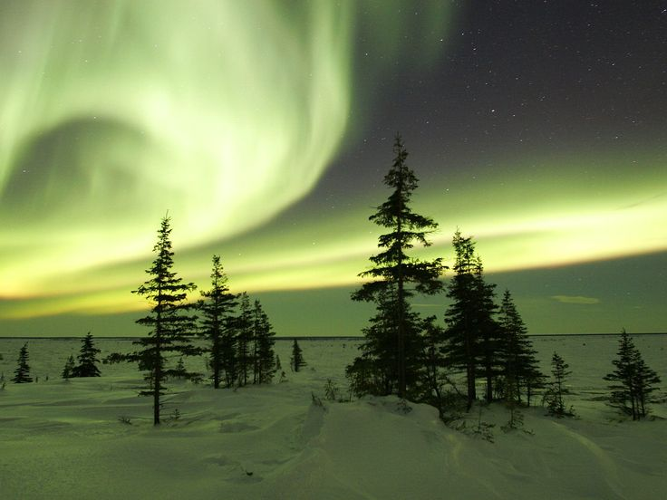 The Northern Lights in Churchill, Manitoba