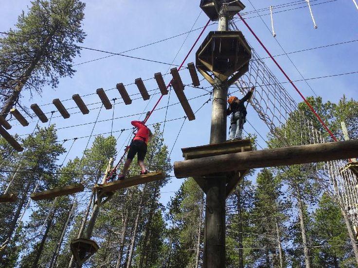 Treetop Adventure Park in Maple Creek and Waskesiu