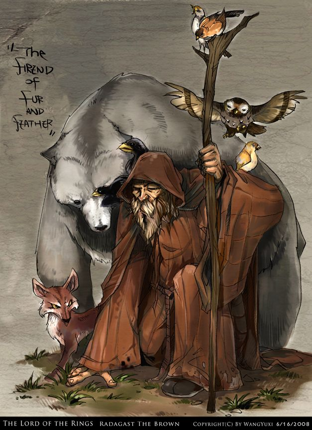 Radagast the Brown by ~Wangyuxi on deviantART