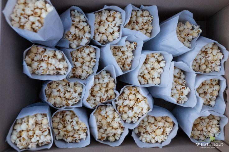 Pregătiți pentru o seară de film în aer liber. #westfield #arad #residential #popcorn #outdoorMovie #happiness #fun #family