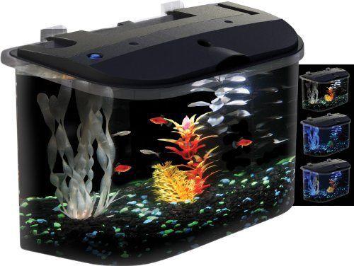 9 of the best starter fish tank kits under 100 for Starter fish tank