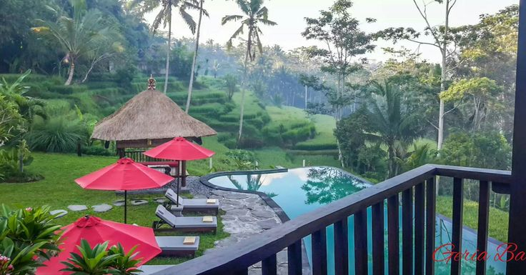 www.geriabalivillas.com/villa-kembang-bali/ #bali #villa #balivilla #geriabali #ubud #balibible #balibucketlist #wonderfulindonesia #travel #trip #nature #ricefields #ootd #holiday #honeymoon #trip #vacation #ubudvilla #vscom #beautifuldestination #bgbk #luxuryworldtraveler #hgtv #destinosmaravilhososbyeli #theluxurylifestylemagazine #beautifuldestinations #luxwt #sassychris1 #worldtravelmart