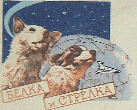 Belka and Strelka dogs in sace