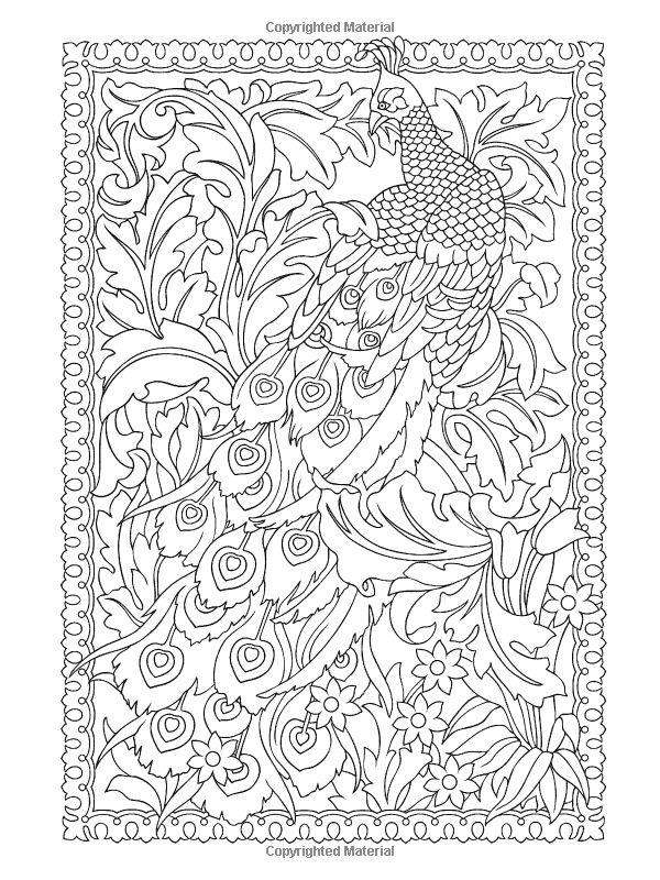 secret garden coloring pages completed operations   1000+ images about PEACOCK line drawings on Pinterest ...