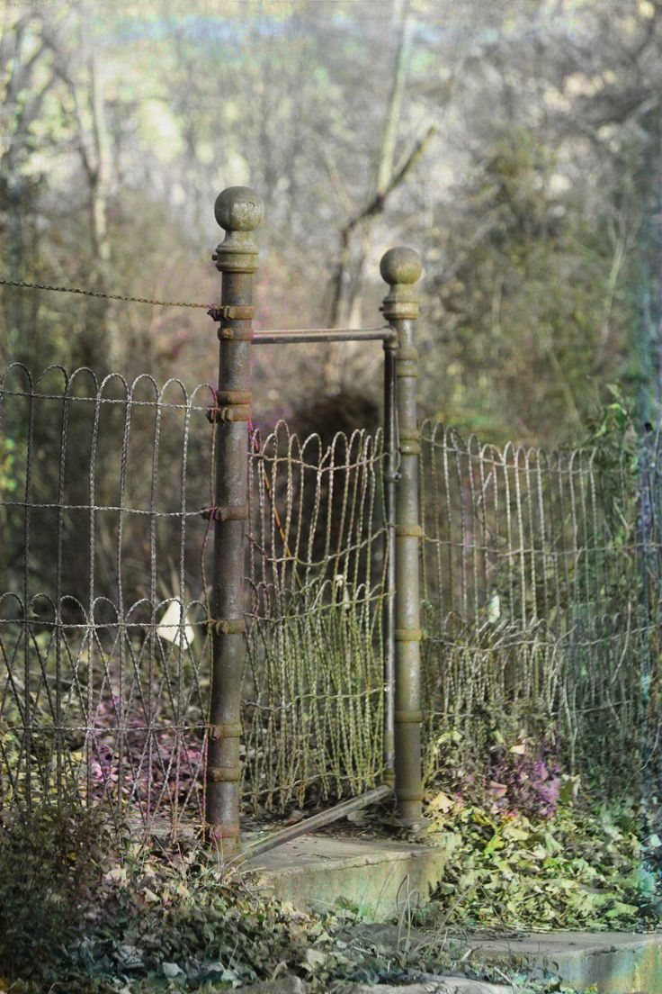 love this garden gate and fence