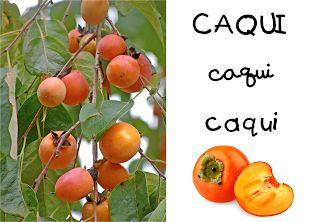 QUÉ HACEMOS HOY EN EL COLE?: FRUITS I FRUITES DE TARDOR