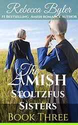 Amish Romance: Rumspringa Forgiveness: The Amish Stoltzfus Sisters Book 3: (Inspirational Amish Romance)