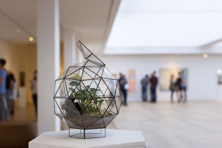 Lady Garden | Exhibition Opening   10. 09. 2017   Glass Terrarium from Denny Mo on display at #CavalliEstate