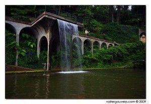 Monte Palace dos jardins botânicos mais bonitos do Mundo